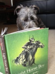 harry reading